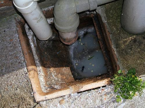 Clogged Drain Tips