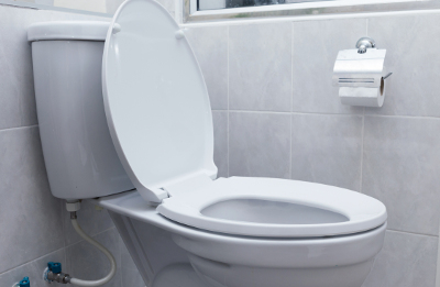 COMMON CAUSES OF TOILET CLOGS